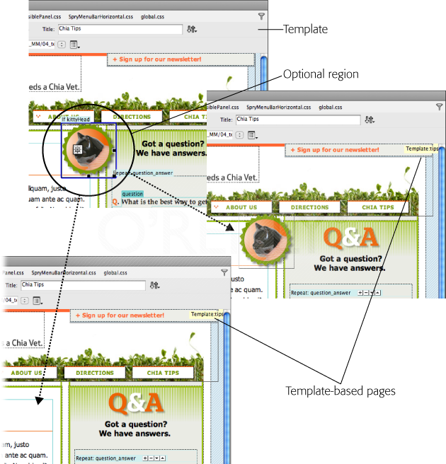"Now you see it, now you don't. Optional regions let you show or hide content on a page-by-page basis. In these examples, the template page (top) has an optional region containing a ""Chia Kitten"" icon (circled). When you create a page from this template, you can either display the optional region (middle) or hide it (bottom)."